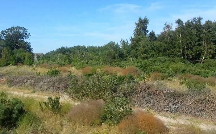 Pape Nature Park