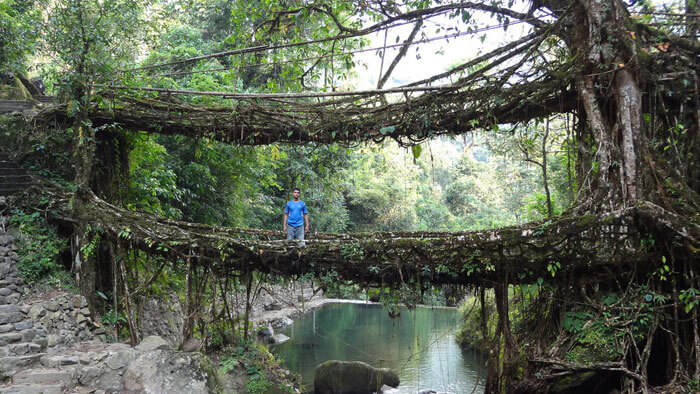 A man stands on the living root bridge in Meghalaya