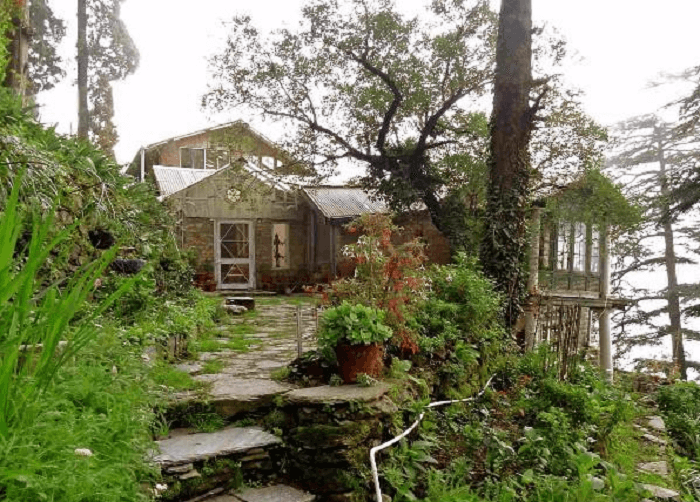 Aira Holme in Shimla is a surprise amidst the urban forests