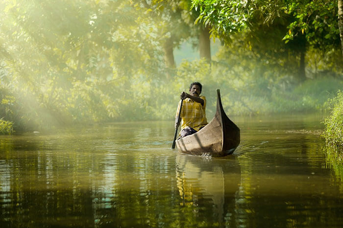 A man rowing a boat in the backwaters of Alleppey