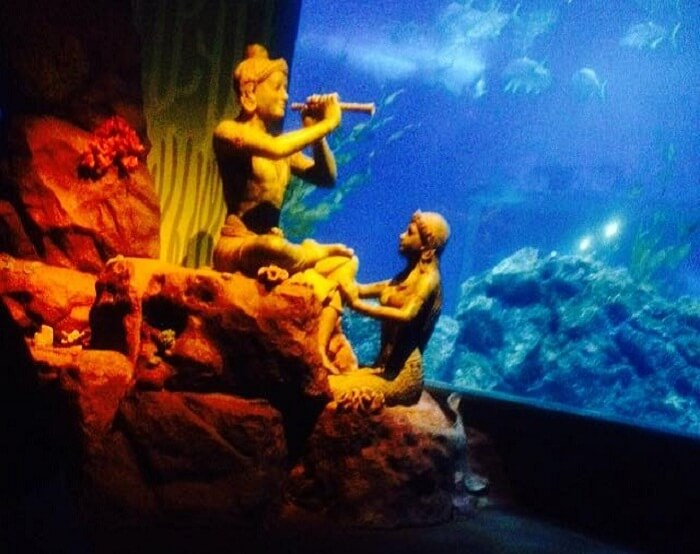 Witnessing the charm of the Siam Water World