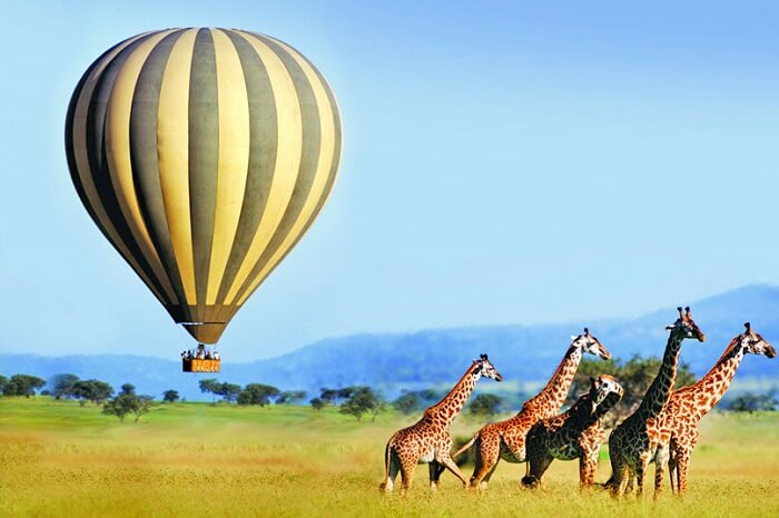 Hot Air Balloons In South Africa