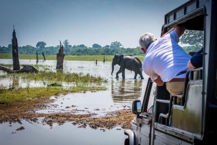 Udawalawe National Park in Sri Lanka