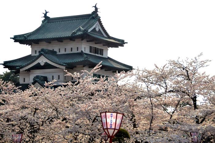 Fantastic place to visit