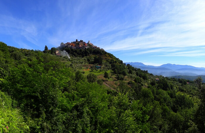 Larch Tree Valley Trek