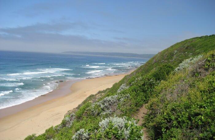 Wilderness Beach View