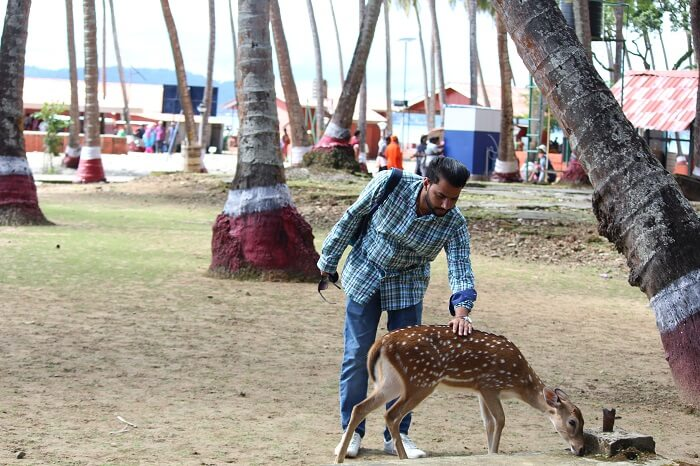 found exotic wildlife animals
