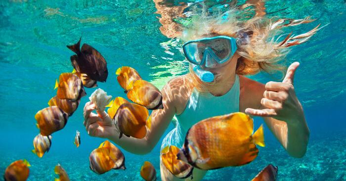 Snorkeling In Nemo Island