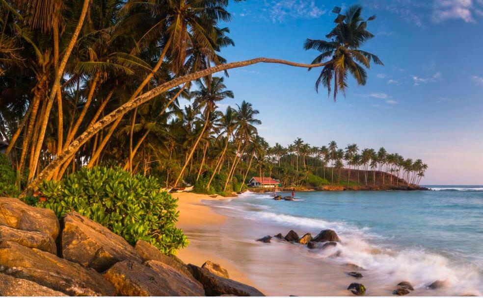 19 Photos That Will Make You Wish You Were In Sri Lanka