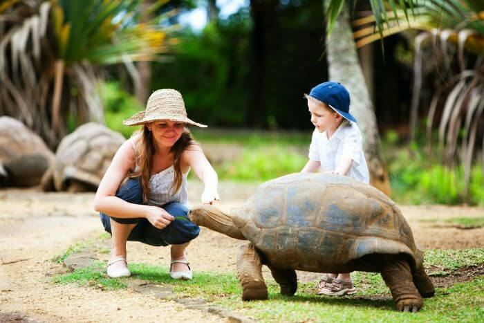Mother son duo meeting an old tortoise in Parc Francois Leguat in Mauritius