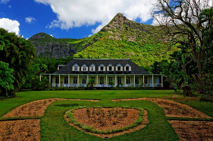 The lush greenery and the beautiful backdrop at the Eureka House Museum